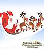 SLEIGH RIDE Fragrance Oil - 100% Premium Grade Uncut Oil - Perfect blend of pine, apple, cinnamon and holly with a splash of vanilla - Fragrance Oil By Oakland Gardens