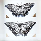 Butterfly Pair / Ink and Gold Leaf on Paper
