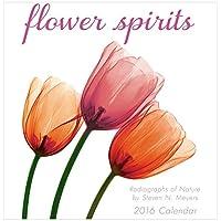 Flower Spirits 2016 Mini (Calendar)