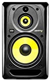 KRK RP103G3  10'', 3-way High Performance Studio Monitor (Black)
