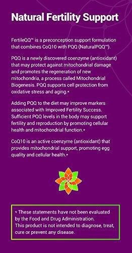 FertileQQ - BOOST your Fertility - Get Pregnant NOW - CoQ10