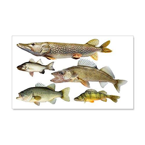 Cheap  CafePress - All fish Wall Decal - 20x12 Wall Decal, Vinyl Wall..
