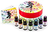 Plant Therapy Chakra Synergies Essential Oil Set