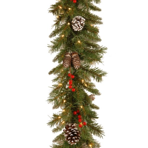 National Tree 9 Foot by 10 Inch Frosted Berry Garland with 100 Clear Lights -