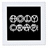 3dRose Alexis Design - Total Protest - Funny Decorative Total Protest Text Holy Crap on Black - 12x12 inch Quilt Square (qs_285994_4)