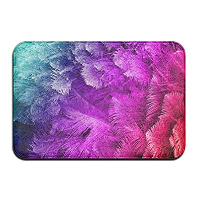 Colorful Ostrich Feather Home Door Mat Super Absorbent Antiskid Front Floor Mat,Soft Coral Memory Foam Carpet Bathroom Rubber Entrance Rugs for Indoor Outdoor