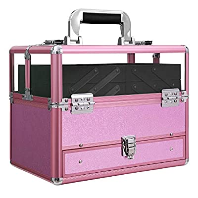 SONGMICS Train Case, Deluxe Jewelry Cosmetic Organizer, Beauty Vanity Makeup Case, with Transparent Acrylic Lid, Pull-out Tray