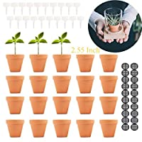 Terracotta Pot Clay Pots Small Clay Ceramic Pottery Planter Cactus Flower Pots Succulent Pot Drainage Hole-Great for Plants,Crafts,Wedding Favor (2.55INCH, 2.55)