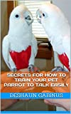 Secrets for How to Train Your Pet Parrot To Talk EASILY