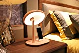 LUCKY CLOVER-AXmas Princess 50 LED Lighted Vanity Makeup Mirror Table Lamp Portable Touch Screen Phone Frame Cordless Adjustable Brightness USB Port Desk Night Light gift(yellow,pink) , Pink