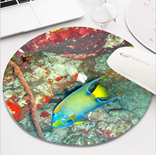 Nxmouse Customization Round Gaming Computer Keyboard Mouse Pad Mouse Mat with Non-Slip Rubber Base(8 Inch) Queen Angel Fish Mousepad.