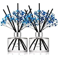 Cocod'or Preserved Real Flower Reed Diffuser/Aqua Marine / 6.7oz(200ml) / 2 Pack/Reed Diffuser Set, Oil Diffuser & Reed…