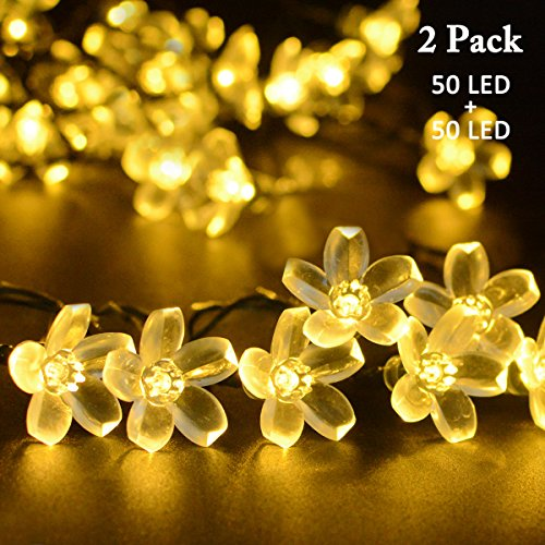 Flower Led Lights String in Florida - 3