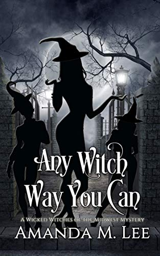 Any Witch Way You Can (Wicked Witches of the Midwest Book -