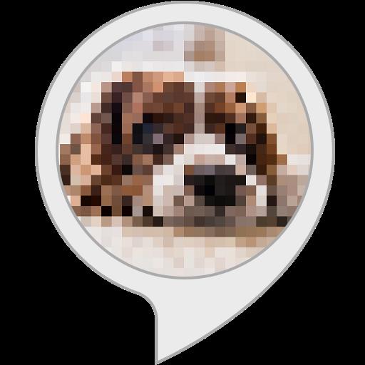 Pixelduell