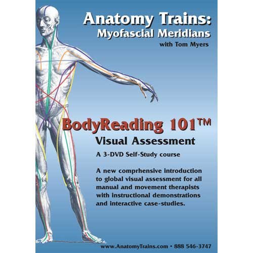 Anatomy Trains Myofascial Meridians Bodyreading 101 Visual