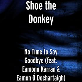 No Time to Say Goodbye (feat. Eamonn Karran & Eamon Ó Dochartaigh)