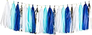 20PCS Shiny Tassel Garland Tissue Paper Tassel Banner,Table Decor,Tassels Party Decor Supplies for Wedding,Birthday,Bridal/Baby Shower,Anniversary,DIY Kits - (Sapphire Blue/Light Blue/White/Silver)