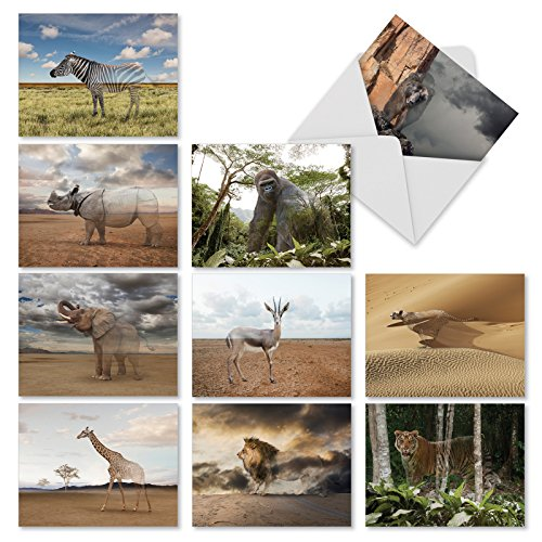 (10 Thank You Notes 'Vanishing Wildlife', Boxed Set of Endangered Species Thank You Cards with Envelopes 4 x 5.12 inch, Disappearing Critical Animals Gratitude Greeting Cards M1736TY)