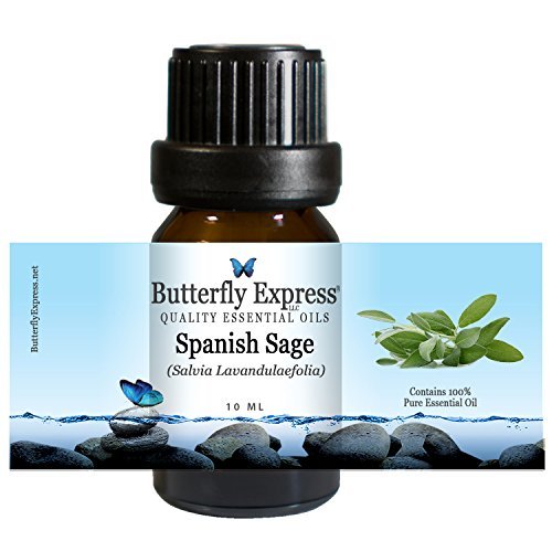 (Spanish Sage Essential Oil 10ml - 100% Pure by Butterfly Express)