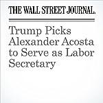 Trump Picks Alexander Acosta to Serve as Labor Secretary | Damian Paletta,Carol E. Lee