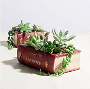 Creative small fleshy resin flowerpot succulents creative personality retro shape Book planter flowerpot
