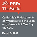 California's Undocumented Workers Help the Economy Grow – but May Pay the Cost | Valerie Hamilton