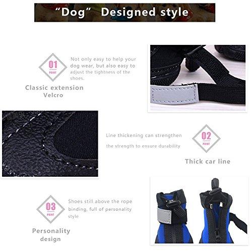 Cintura Outdoor Dimensioni Size Scarpe Cerniera Sportive Boots Cane Antiscivolo Cani Pet Dog Per Blue 10 Impermeabile 2 N04 Color In Resistente Colore Gomma Riflettente 6xwfZzqS6