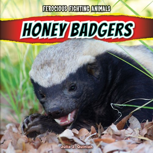 Honey Badgers (Ferocious Fighting Animals)