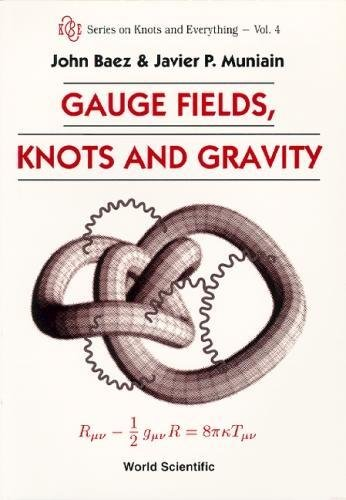 4: GAUGE FIELDS, KNOTS AND GRAVITY (Series on Knots and Everything)