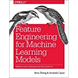 Feature Engineering for Machine Learning Models