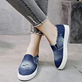 Women's Fashion Lace Mesh Sneakers Canvas Casual