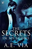 img - for The Secrets in My Scowl book / textbook / text book