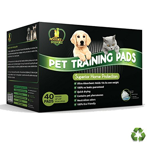 [BEST PUPPY PADS & DOG TRAINING PAD – Quick-dry - Powerful Leak Protection – Superior Wee Wee Pee Pads for Easy Pet Housebreaking, Incontinence Dogs & Crate Training - FREE eBook] (Biodegradable Training Pads)