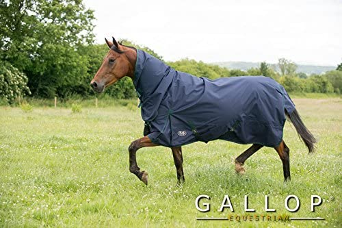 Gallop Trojan 600d Lightweight No Fill Horse or Pony Combo Turnout Rug £36