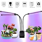 Plant Grow Lights for Indoor, 60 LED Chips Full Spectrum with UV&IR, 3/6/12H Timing Grow Lamp,10 Dimmable Levels 30W 3-Head Adjustable 360°Flexible Gooseneck For Sale