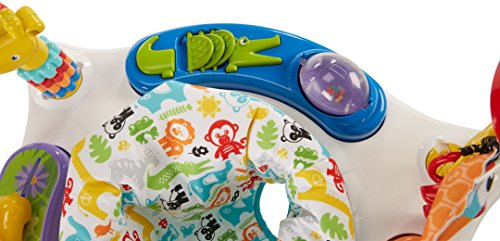 Fisher-Price Animal Activity Jumperoo, Blue by Fisher-Price (Image #8)