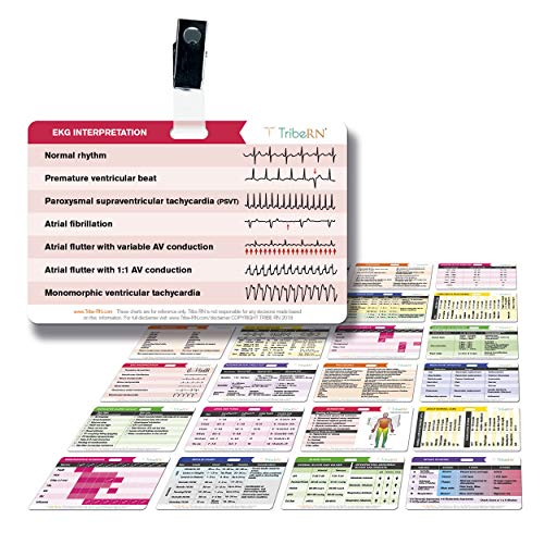 BadgeGuru Set by Tribe RN - 26 Nursing Badge Reference Cards - EKG, Vitals, Lab Values etc. (Bonus Nursing Cheat Sheets) Perfect Gift for a Nurse, Student, or Other Medical Professional (Standard)