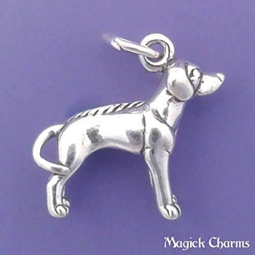 Sterling Silver 3-D RHODESIAN RIDGEBACK Dog Charm Pendant - lp2443 Jewelry Making Supply Pendant Bracelet DIY Crafting by Wholesale Charms