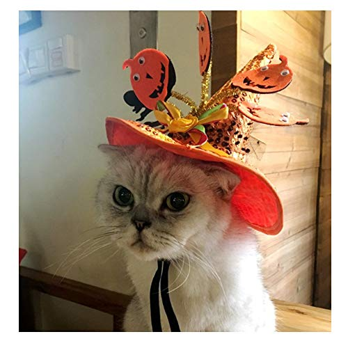 Kingwawa Pet Halloween Headwear,Magic Pumpkin Hat, Orange Witch Cap with Black Dot Ornament,Party Costume,Festival Cosplay,Decoration Accessories for Cat,Kitty,Small Dogs or Pets Portrait -