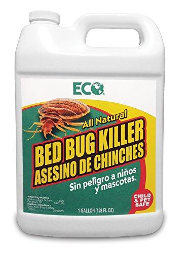 ECO Bed Bug Killer, 1-Gallon