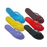 6 Pairs Assorted New Women's Mesh Chinese Slippers (6 B(M) US)