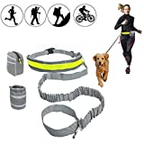 HandsFree Dog Leash with Pouch for Running Walking Training Hiking Bungee Leash with Adjustable Waist Belt .