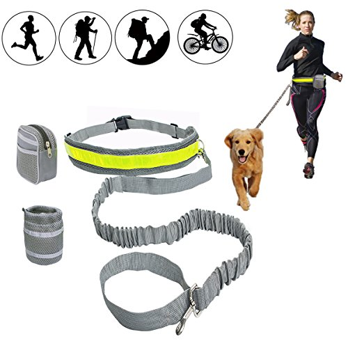 HandsFree Dog Leash with Pouch for Running Walking Training Hiking Bungee Leash with Adjustable Waist Belt . by SBDX PET