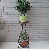 WSSF- European Iron Art Flower Rack Double Layer Living Room Green Radish Flower Pot Shelf Floor Multilayer Plant Flower Display Stand - Indoor and Outdoor (Color : Ancient Copper Color)