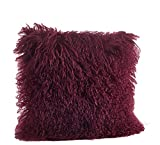 Fennco Styles Genuine Mongolian Lamb Fur Down Filled Decorative Throw Pillow, Many Colors (20-inch Square , Eggplant)