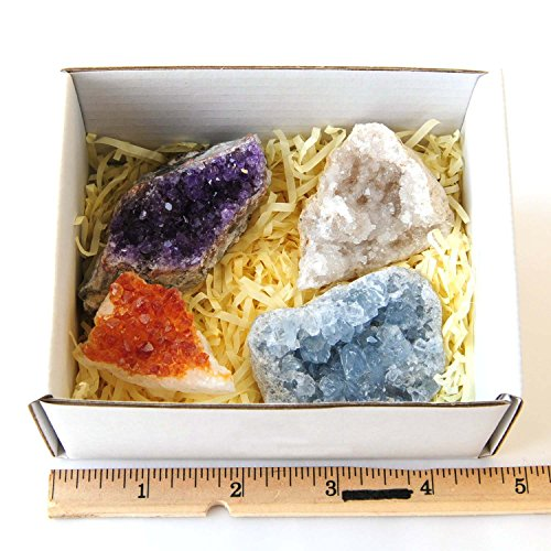 Moontree Amethyst Citrine Celestine Crystal Geodes with Stones Information, Druzy Geode Cluster Specimen Point Rock, Gems Gift Gemstone Gift ()
