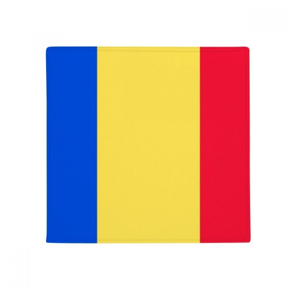 60X60cm DIYthinker Romania National Flag Europe Country Anti-Slip Floor Pet Mat Square Bathroom Living Room Kitchen Door 60 50Cm Gift