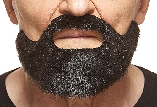 Short Boxed black lustrous fake beard, self adhesive - Beards And Mustaches Costume