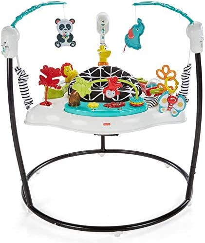 Fisher-Price Animal Wonders Jumperoo, Wh